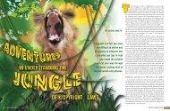 Adventures in Understanding the Jungle of ... - Pace University