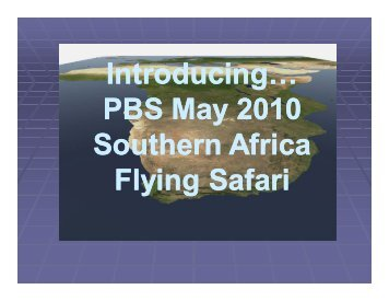 Introducing… PBS May 2010 Southern Africa Flying Safari - Pacific ...