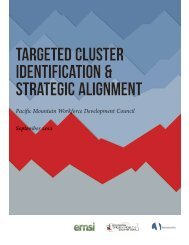 Targeted Cluster Identification & Strategic Alignment - Pacific ...