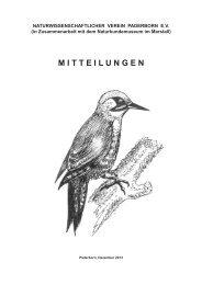 Mitteilungen 2013 - Stadt Paderborn