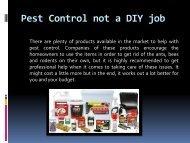 Pest Control not a DIY job