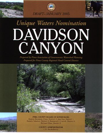 PAG Report on Davidson Canyon - Pima Association of Governments