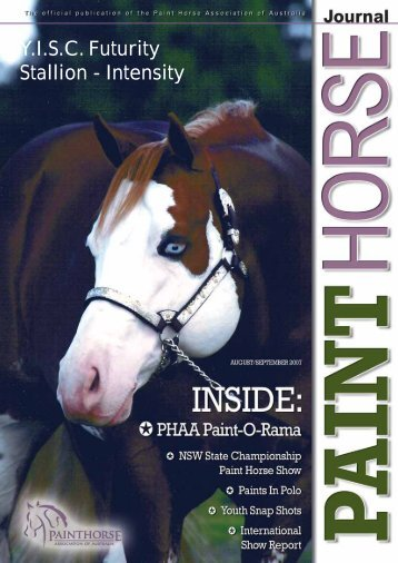 YISC Futurity Stallion - Intensity - Paint Horse Association of Australia