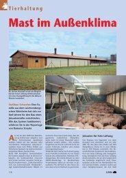 Stallbau Schweine: Mast im Außenklima - PAL-Anlagenbau GmbH