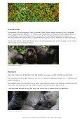 Gorillas - WWF Panda Club - Page 3