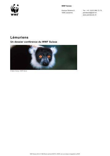 Lémuriens - WWF Panda Club