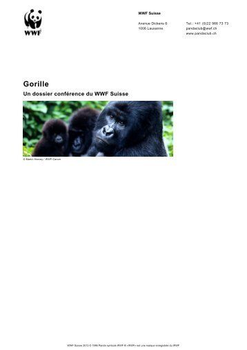 Gorille - WWF Panda Club