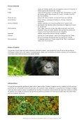 Gorille - WWF Panda Club - Page 2