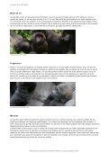 Gorille - WWF Panda Club - Page 3