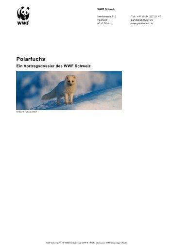 Polarfuchs - WWF Panda Club