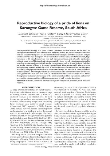 Reproductive biology of a pride of lions on Karongwe ... - Panthera