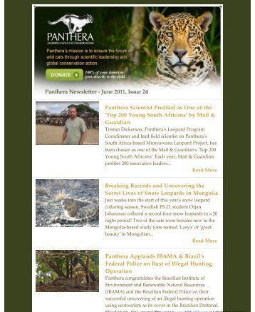 June 2011 Newsletter - Panthera