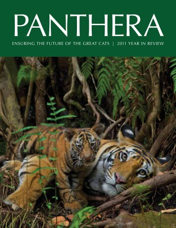 2011 year in review - Panthera