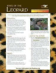 Leopard Report Card - Panthera