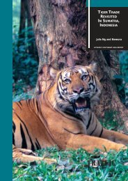 TIGER TRADE REVISITED IN SUMATRA, INDONESIA - Image Source