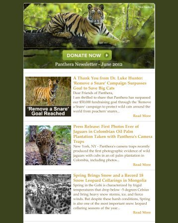 June 2012 Newsletter - Panthera