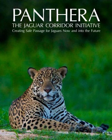 THE JAGUAR CORRIDOR INITIATIVE - Panthera