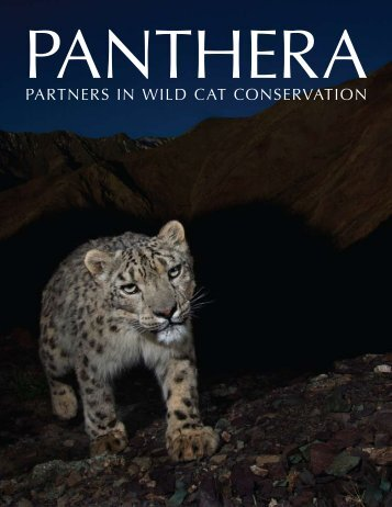 Brochure-Panthera General.pdf