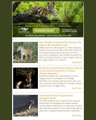 November 2011 Newsletter - Panthera