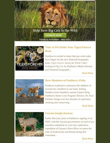 May 2013 Newsletter - Panthera