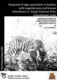 2005-0013-027 - Panthera