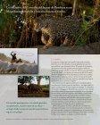 La InIcIatIva deL corredor deL Jaguar - Panthera - Page 2