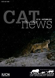 Preliminary results of a long-term study of snow leopards ... - Panthera