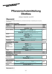 4.Stähler Info 2010 - Papst.ch