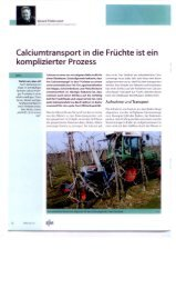 Bericht über frühen Calciumeinsatz - Papst.ch