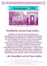 Kursausschreibung 2008 (PDF) - Stiftung Paracelsus heute