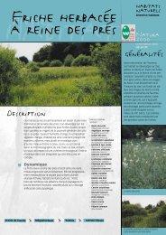 Les friches humides - Parc naturel régional des Vosges du Nord