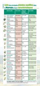 Charte Eco-cueillette - Parc naturel régional du Morvan - Page 6