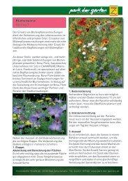 T Blumenwiese - Park der Gärten