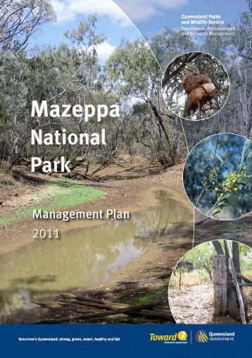 Mazeppa National Park Management Plan (PDF, 500K)