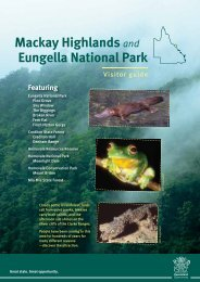Mackay Highlands and Eungella National Park visitor guide (PDF ...