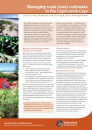 Managing scale insect outbreaks in the Capricornia Cays
