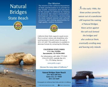 Natural Bridges State Beach - California State Parks - State of ...