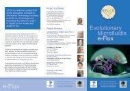 project brochure - Parmenides Foundation