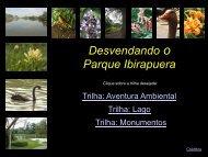 Desvendando o Parque Ibirapuera - Prefeitura de São Paulo