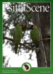PS 20 4 Nov 08.qxd - World Parrot Trust