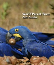 World Parrot Trust Gift Guide