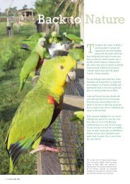 Read the article (PDF) - World Parrot Trust