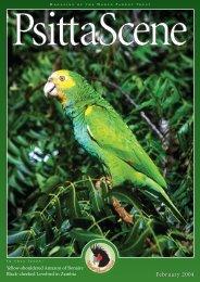February 2004 - World Parrot Trust