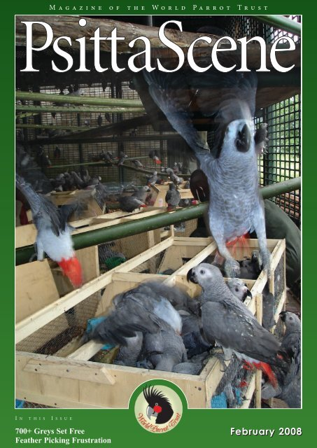 PS 20 1 Feb 08.qxd - World Parrot Trust