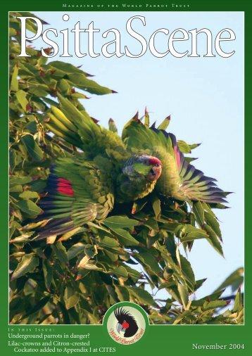 November 2004 - World Parrot Trust