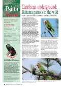 November 2004 - World Parrot Trust - Page 2