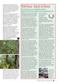 November 2004 - World Parrot Trust - Page 5