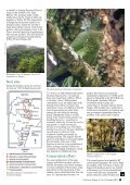 November 2004 - World Parrot Trust - Page 7