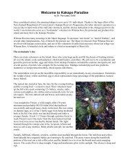Welcome to Kakapo Paradise - World Parrot Trust