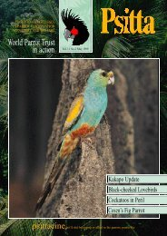 World Parrot Trust in action